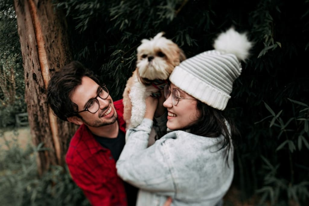 Top 7 Unique Gift Ideas for Pet Lovers