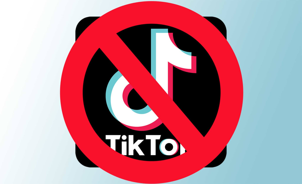 Grab Your TikTok Data Before It's Gone