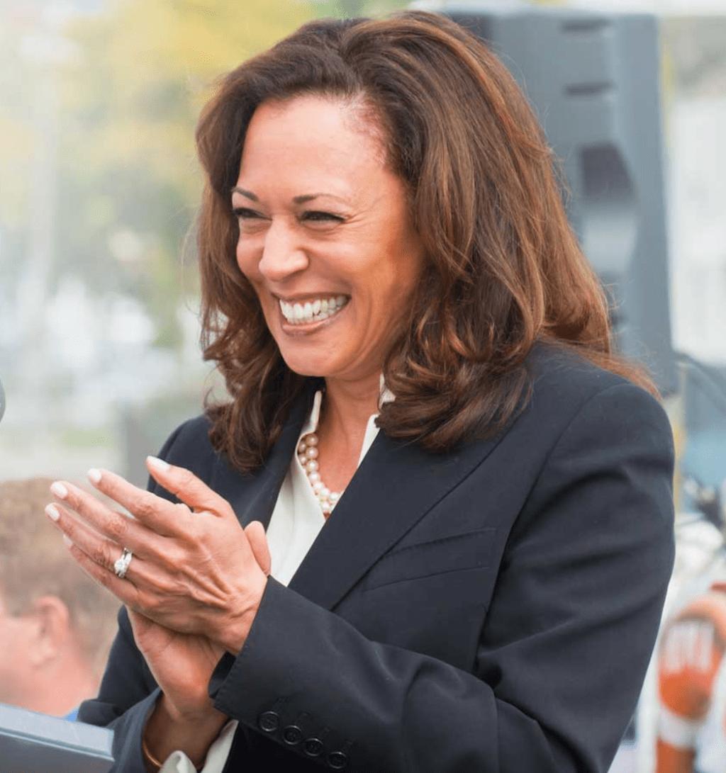 Kamala Harris: Interesting Things About Joe Biden's Running Mate