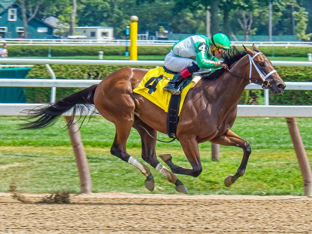 Breeders Cup Classic Superfecta Bet Has Averaged $38,222 Payout Per Year for Each $1 Bet