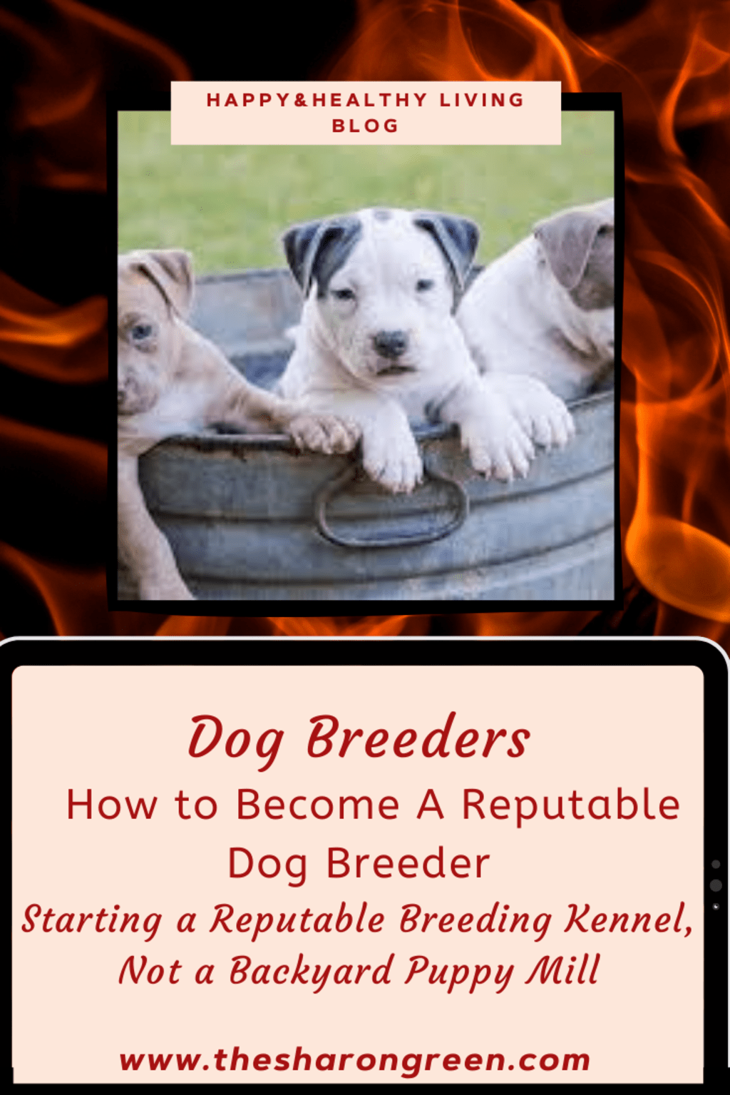 Being A Reputable Dog Breeder
