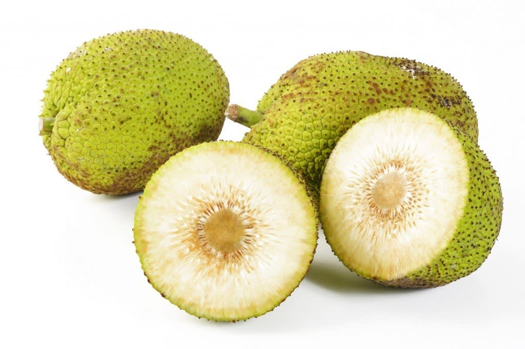 What Is Breadfruit?