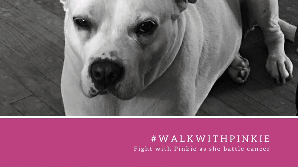 Walk With Pinkie