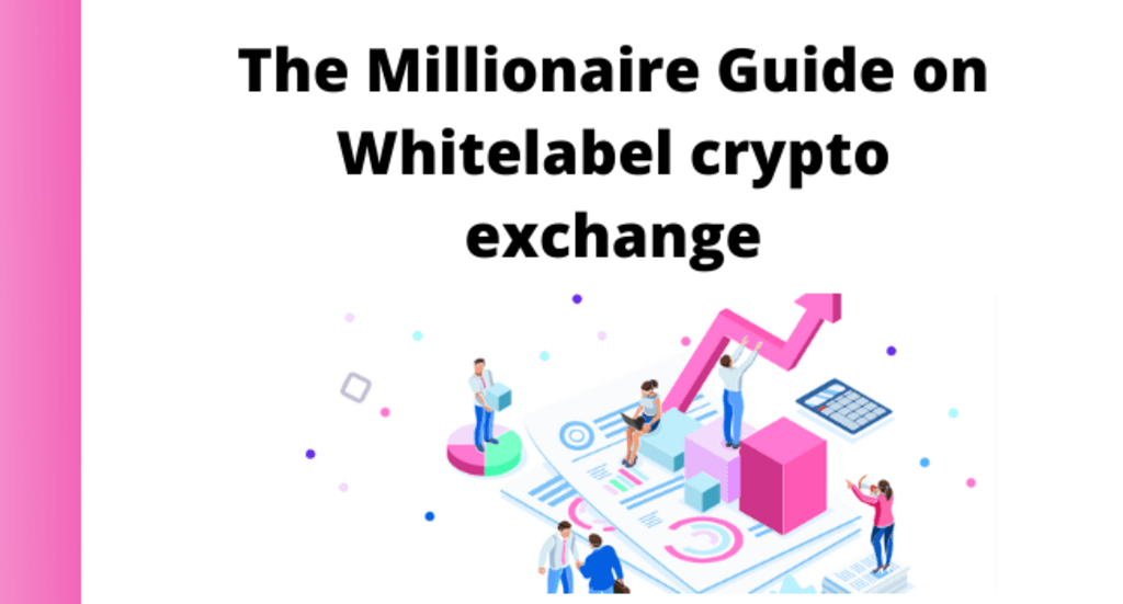 The Millionaire guide on White label Crypto Exchange