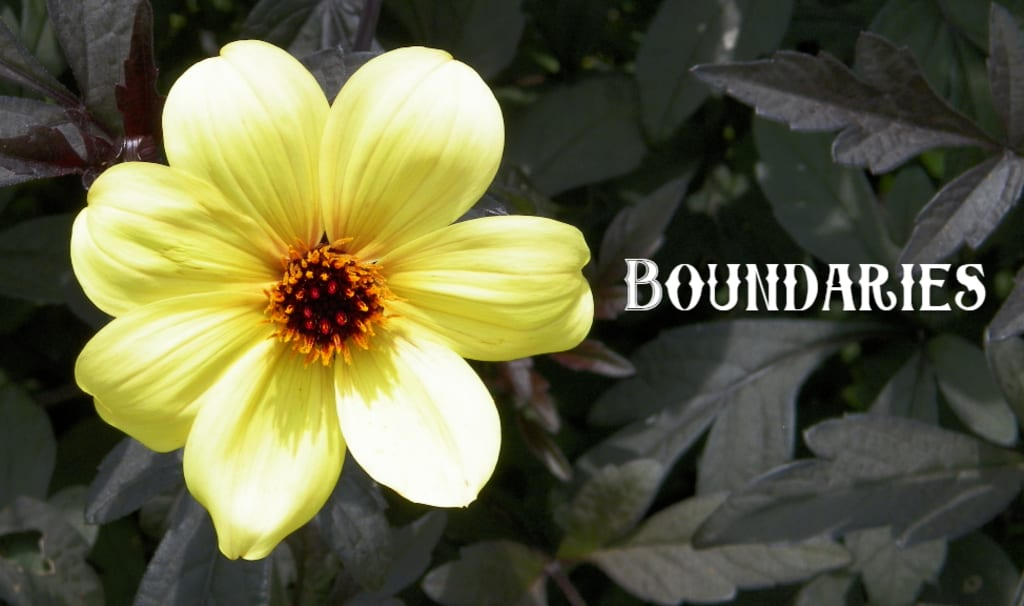 Boundaries for Your Growth