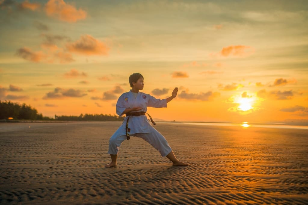 Why I Studied Martial Arts