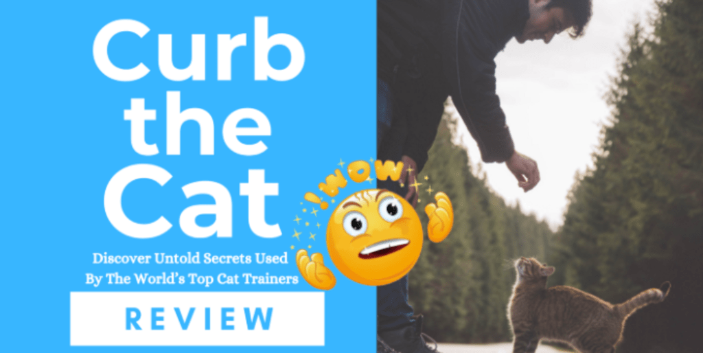 Curb the Cat Review — How to Train a Cat to Sit, Fetch, Potty, and lots more
