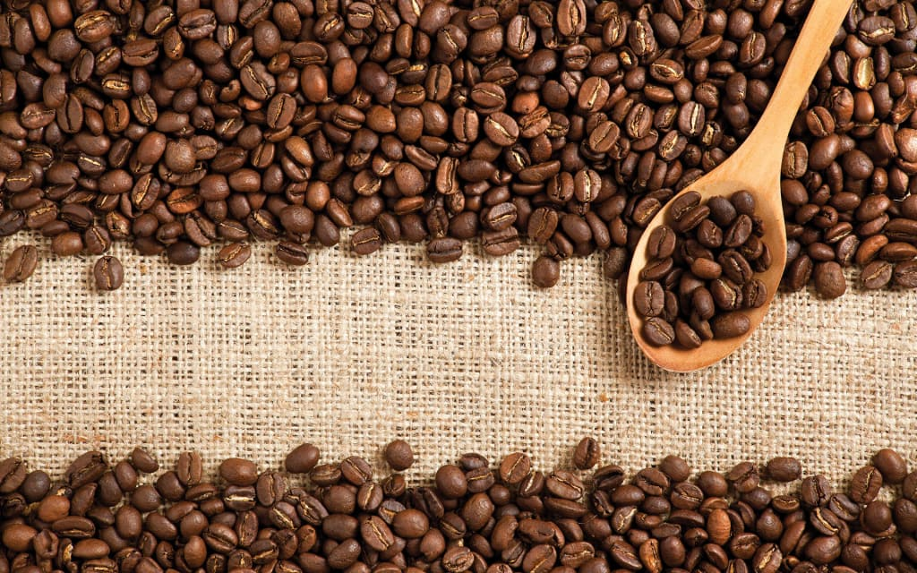 Best Organic Coffee Brands