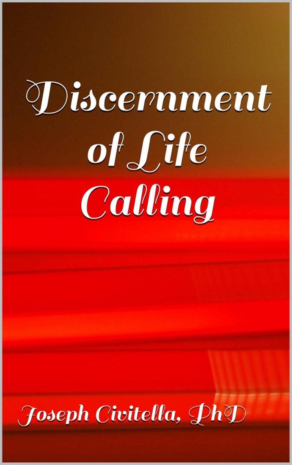 Discernment of Life Calling Excerpt 3