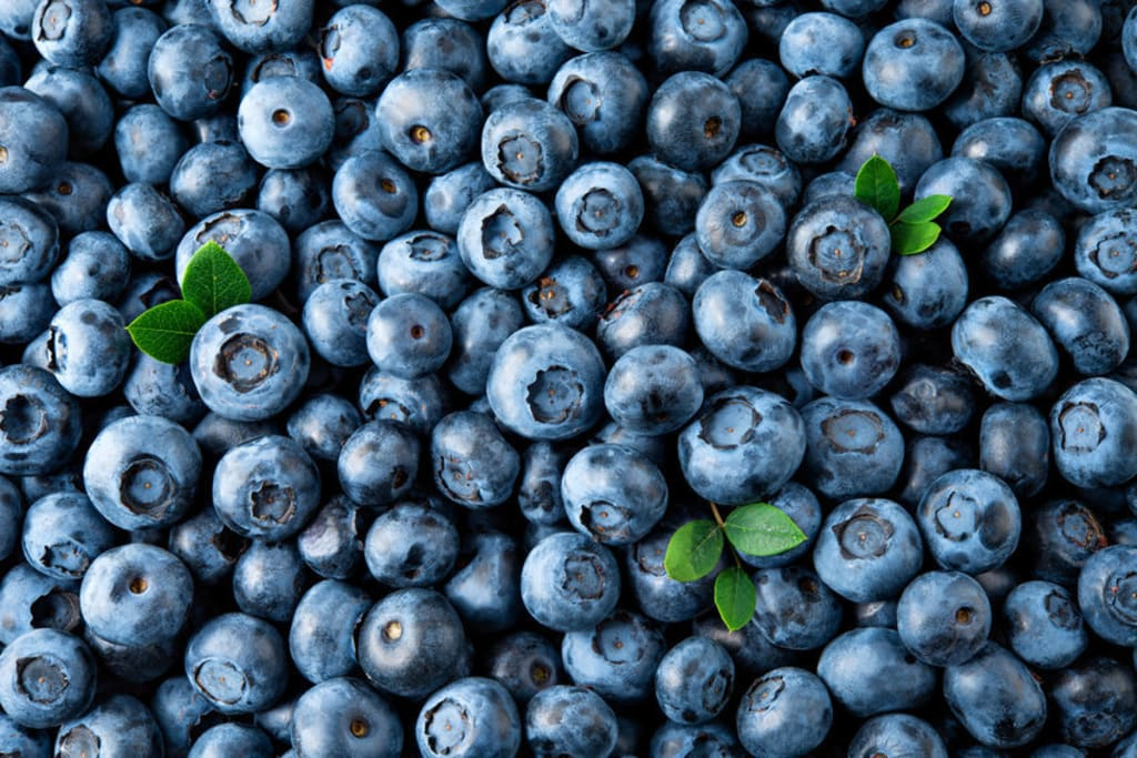 10 Healthy Blueberry Recipes You Must Try