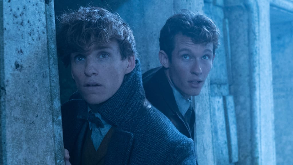 Theseus Scamander: Thoughts, Musings, and Predictions
