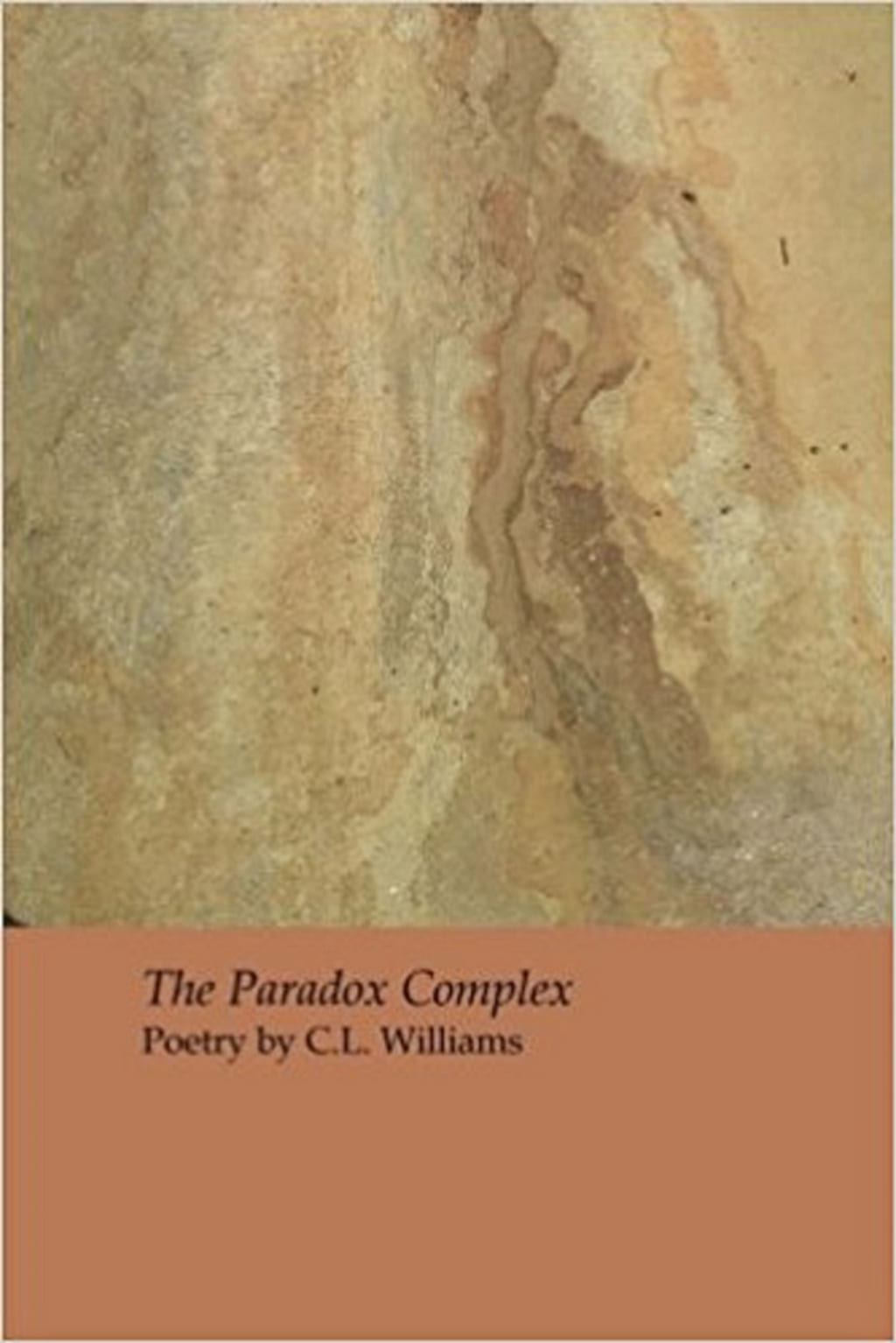 In Review: 'The Paradox Complex' by C. L. Williams