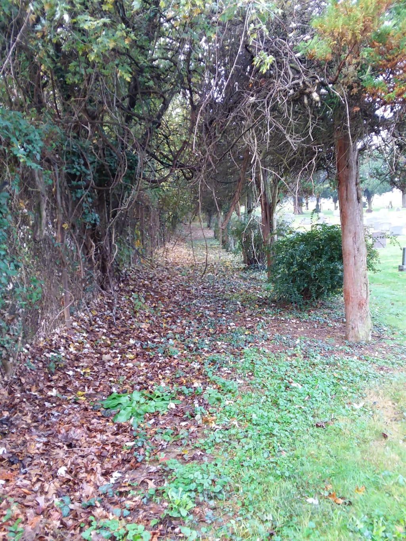 Death Garden