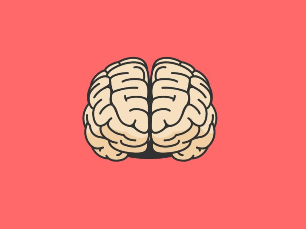 "My Brain: ""The Risk Taker"""