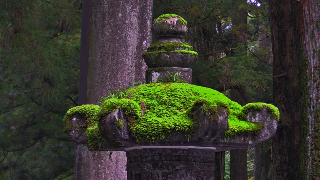 The Secret World that Exists Within Japanese Temples