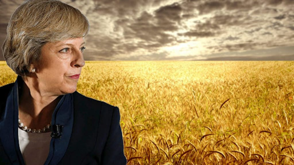 In the Land of Naughty Wheat Fields and Broken Promises