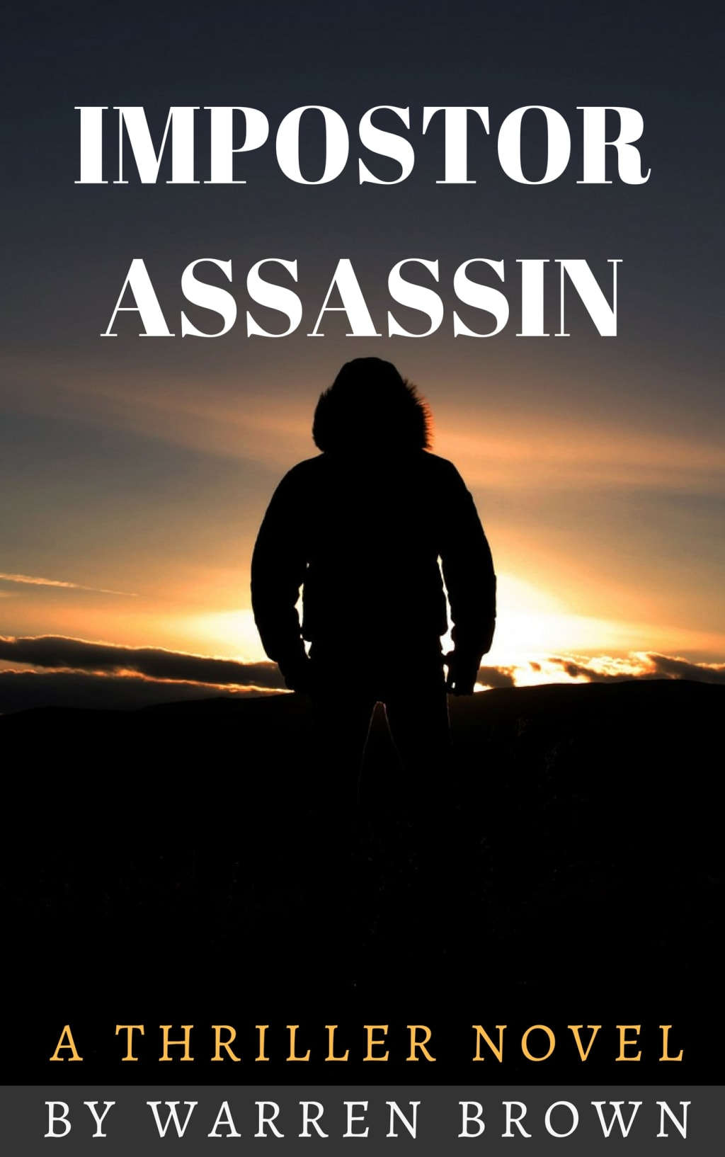 'Impostor Assassin' - The Thriller Novel