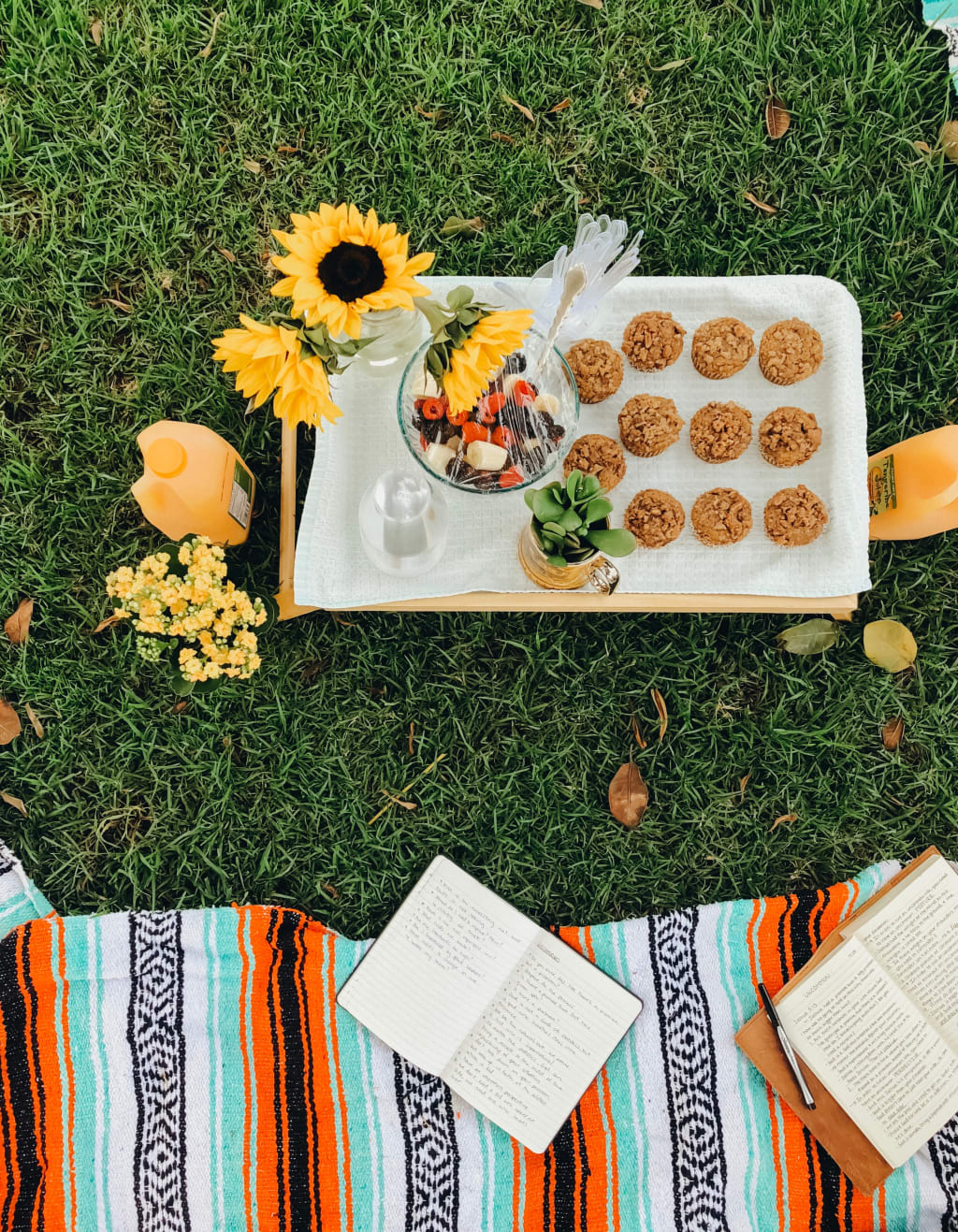 How to Plan a Picnic for Your Kids