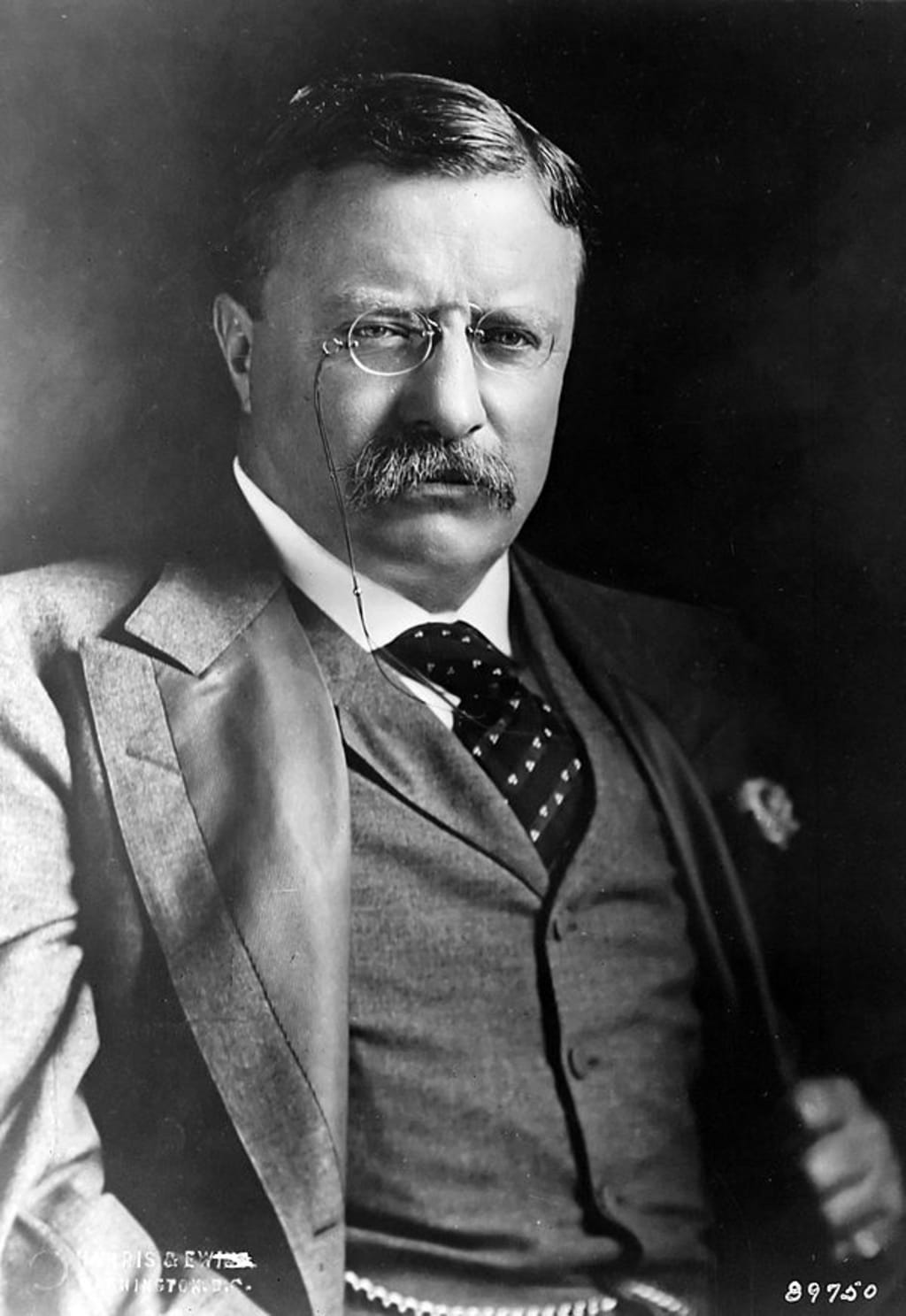How to Build Teddy Roosevelt in 'The Pathfinder RPG'
