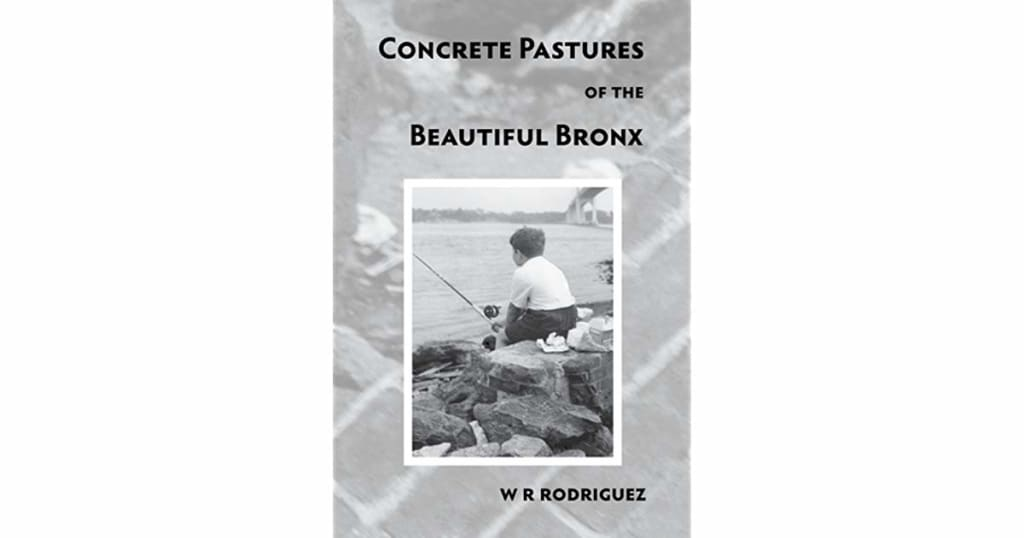 W. R. Rodriquez's Words Guide Readers Through the Beautiful Bronx