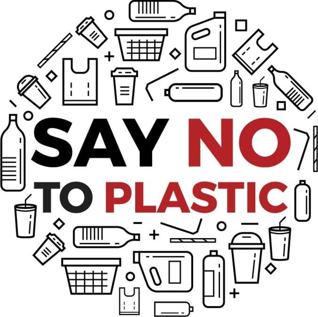 Environmentally Living: Companies Paving the Way to a Plastic-Free World