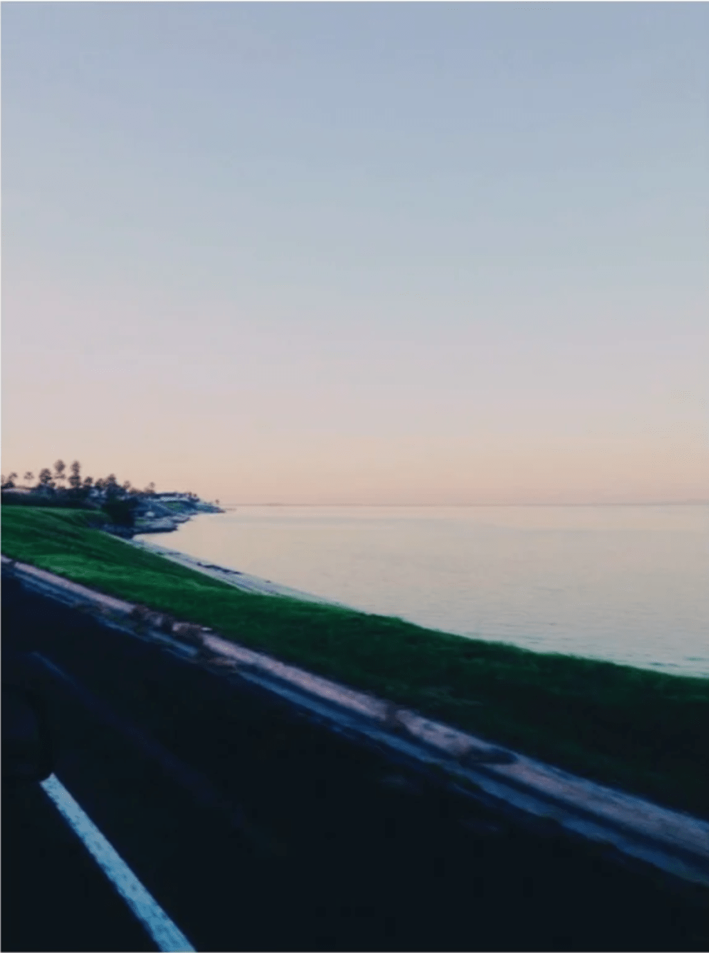Love Letter to My Favorite Hometown Spot