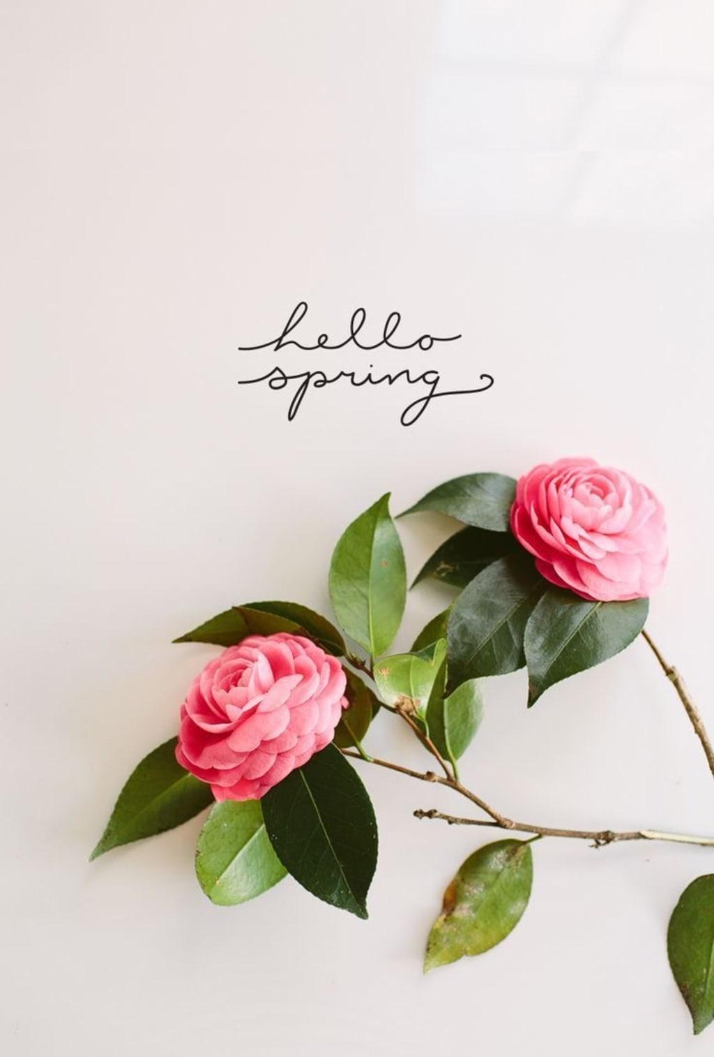 Spring Fever! 💐