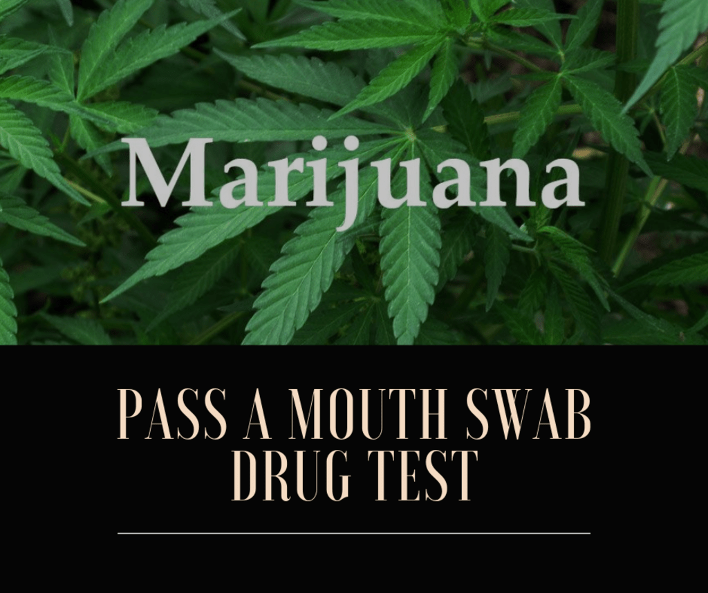 How to Pass a Mouth Swab Drug Test Within 12 Hours