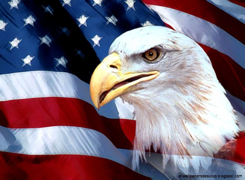 The Real United States of America