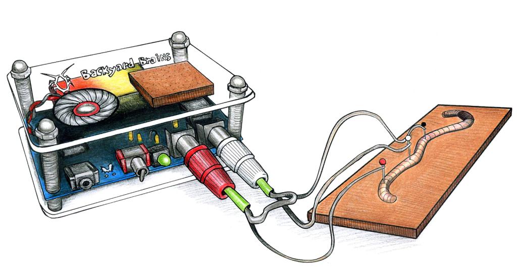 Explore Neuroscience with the Backyard Brains SpikerBox