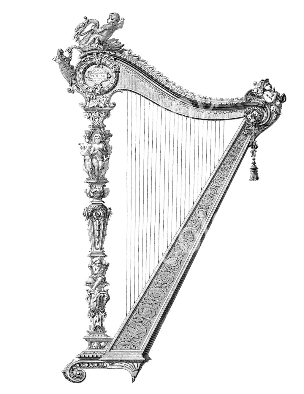 She's Darryl's Harp