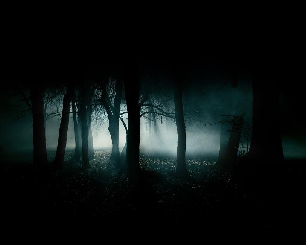 Descending Trilogy: Descending Into Darkness