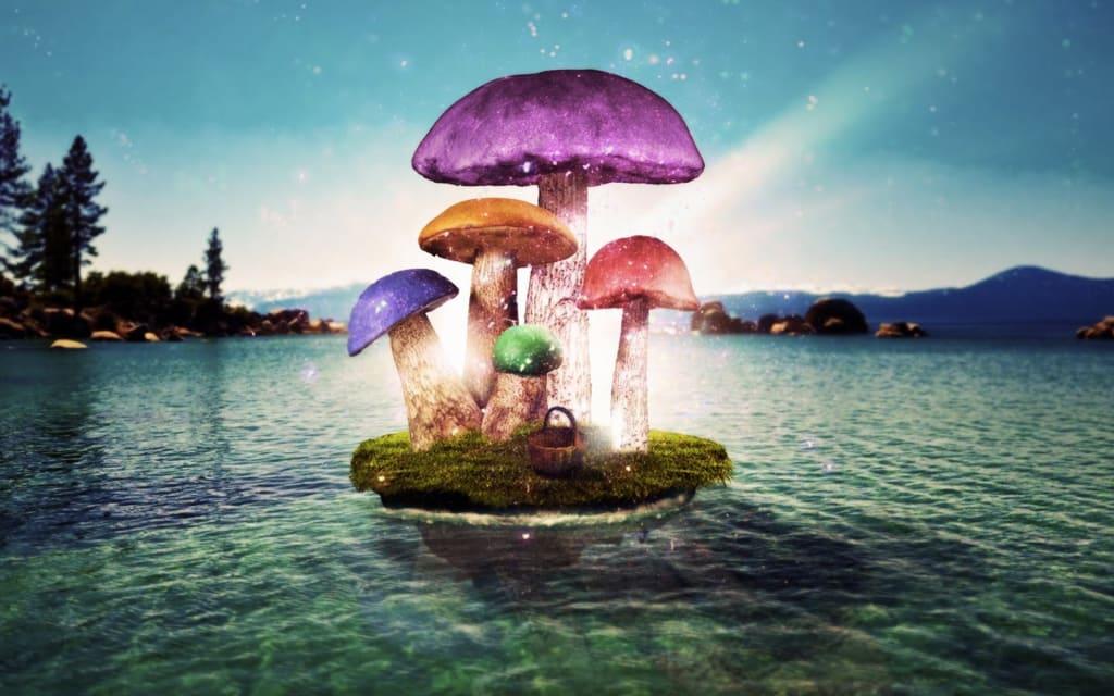 Magic Mushrooms of Hawaii
