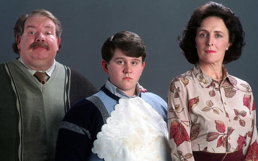 Dursley's Explained Further on Dudley's Birthday