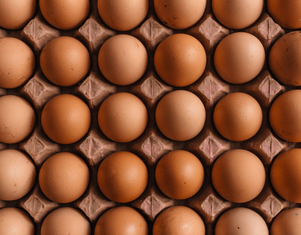10 Ways to Make Eggs into a Meal