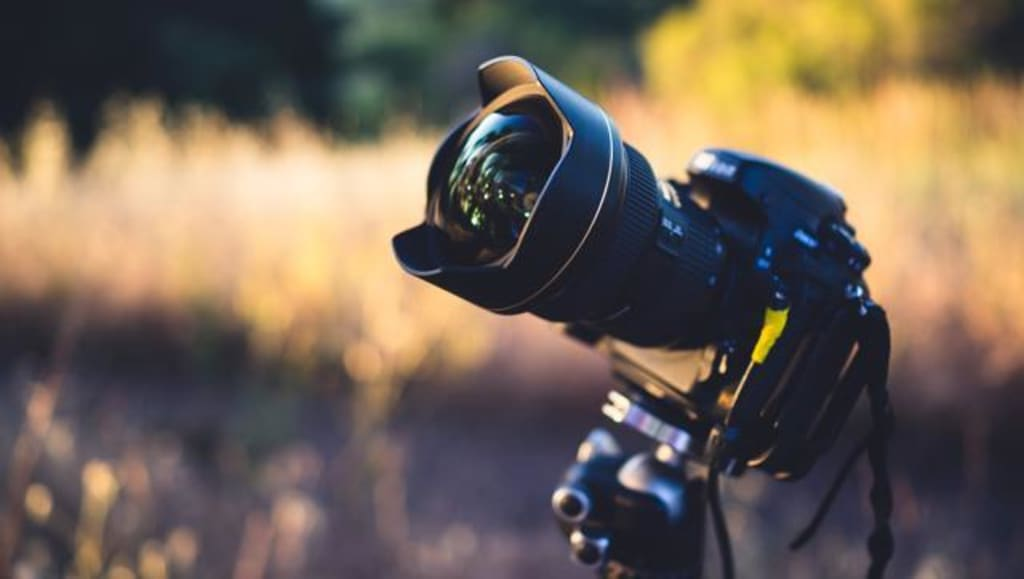 Photography Talk for Beginners: Camera Selection, Operation, and Practicing
