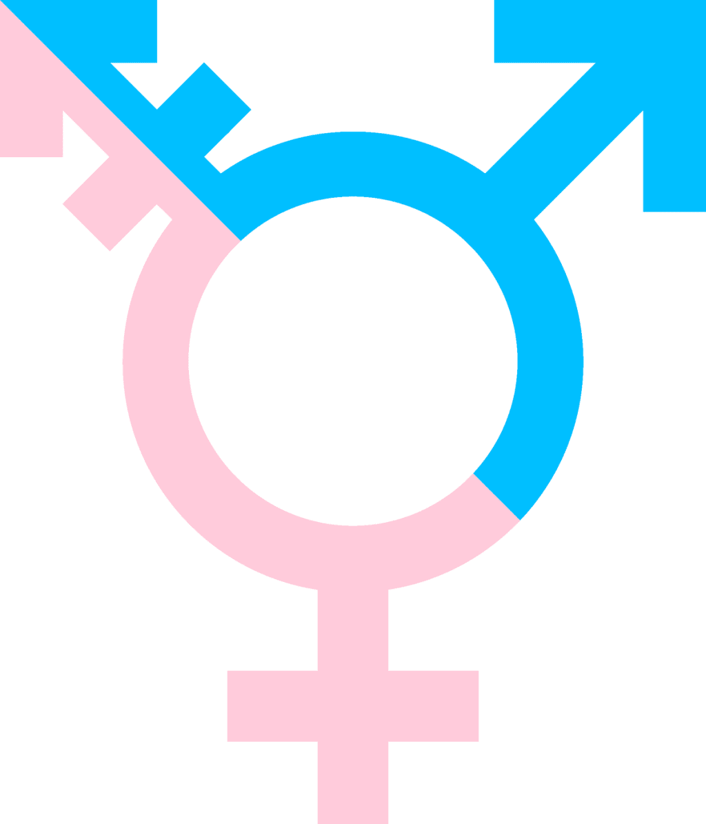 Should Self Identification Replace Gender Recognition Certificates?