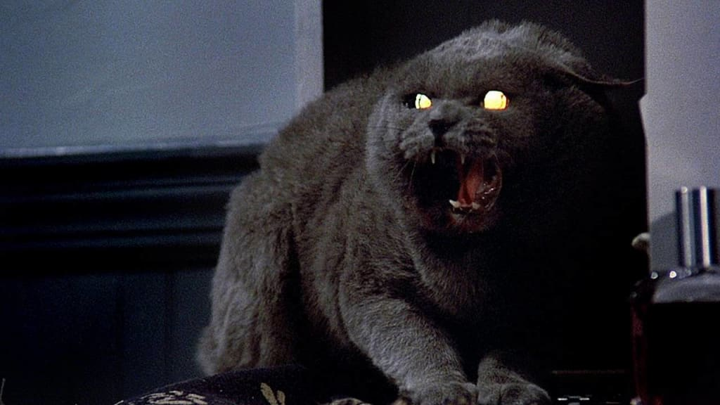 Director Andy Muschietti Wants to Adapt Stephen King's Pet Sematary After It