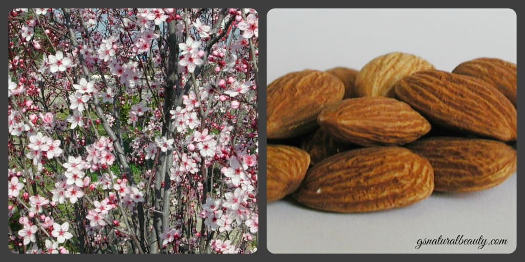 The Benefits Of Almond Oil For Skin And Hair
