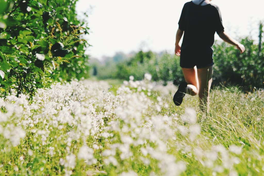 More Reflections on Running & Writing