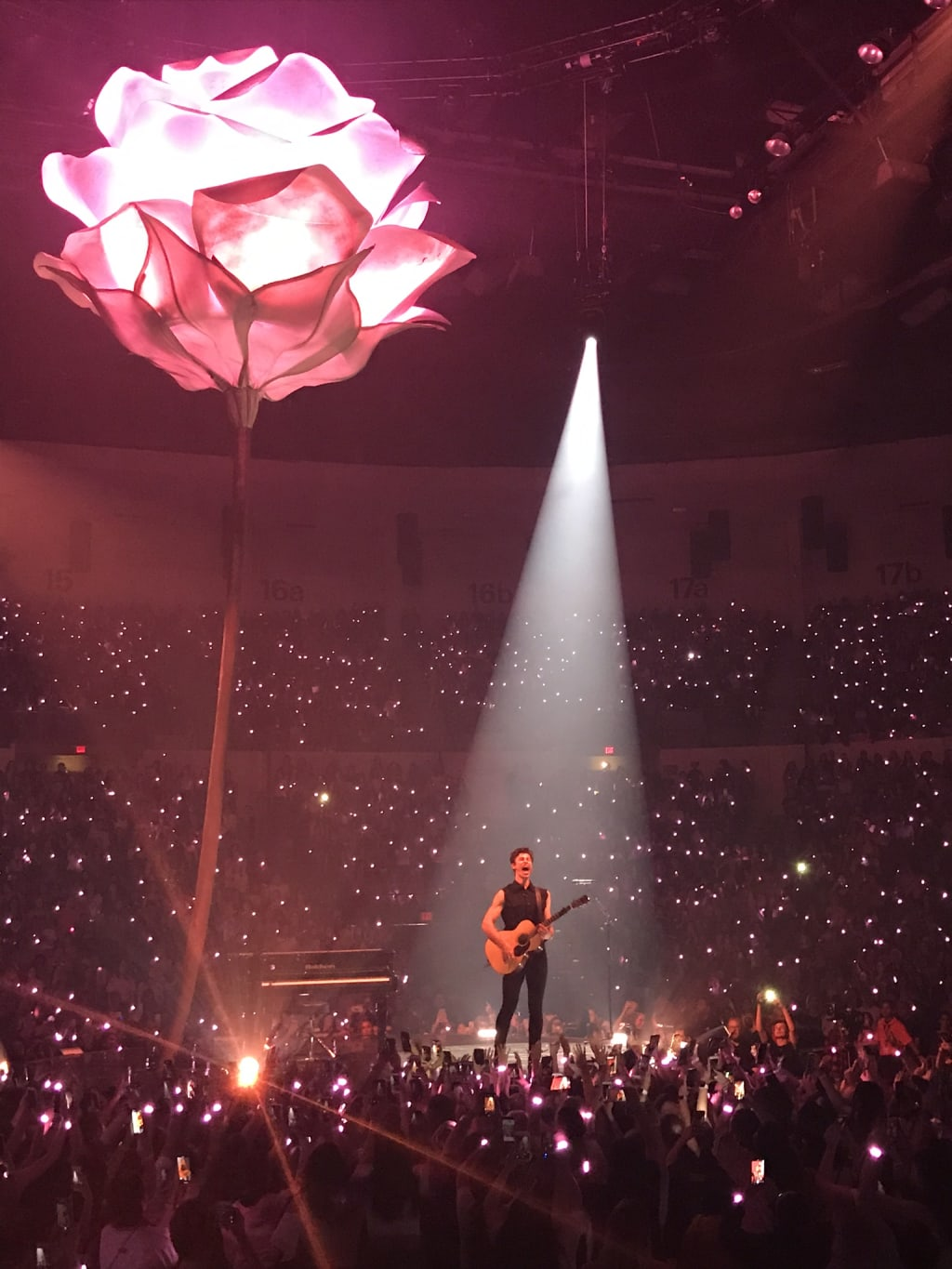 Fallin' All in Shawn Mendes