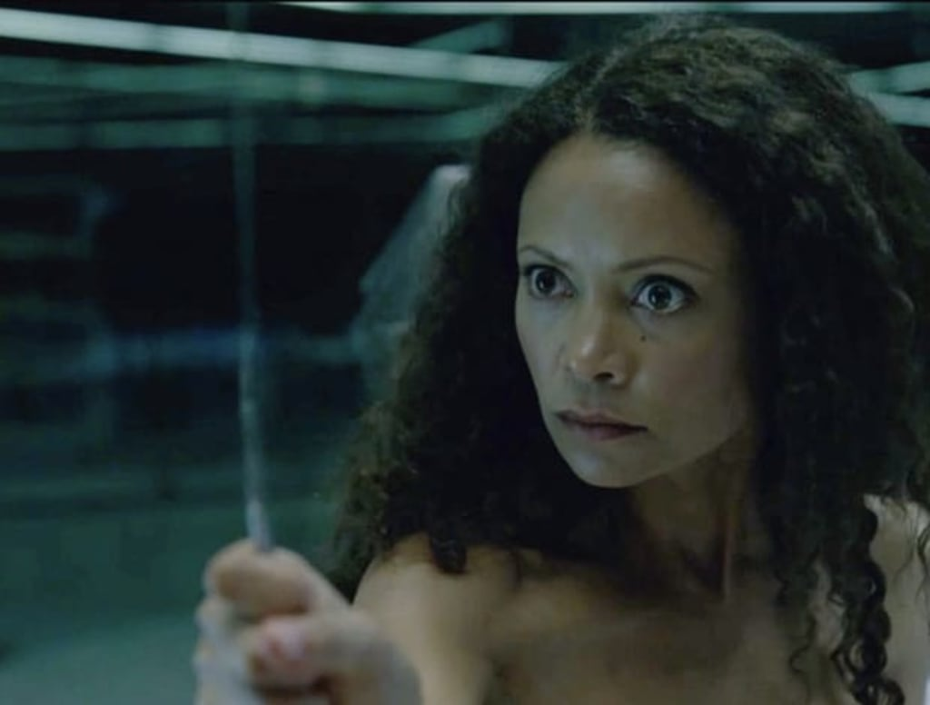 'Westworld': The Epitome of the Gaming Industry's Problems?