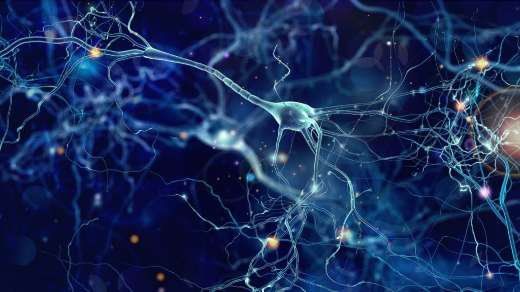 Using Neural Stem Cell Therapy to Treat TBIs