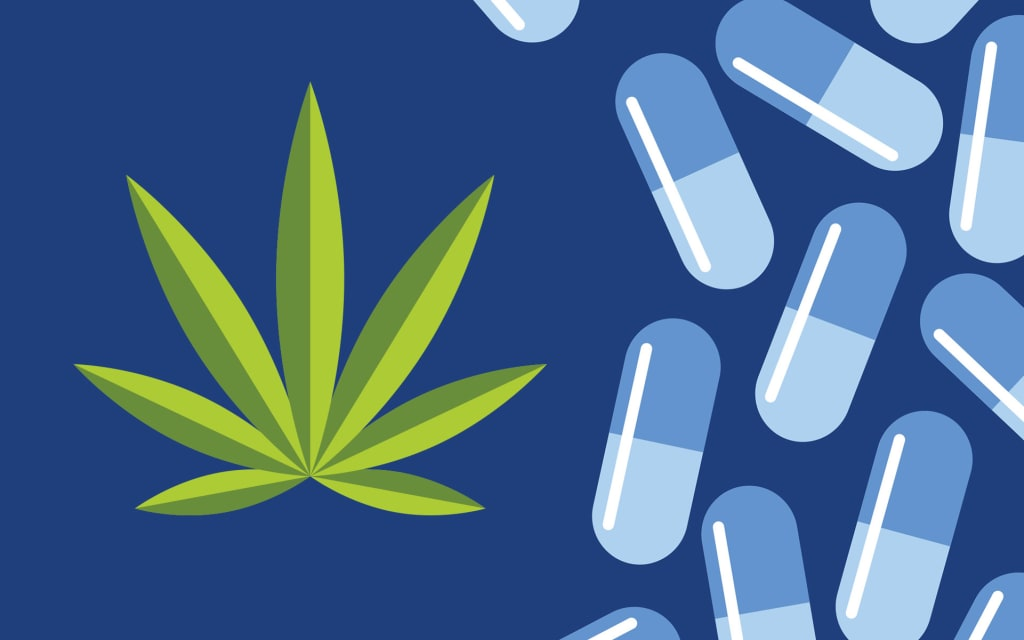 How You Can Use Cannabis to Reduce Opioid Dependence