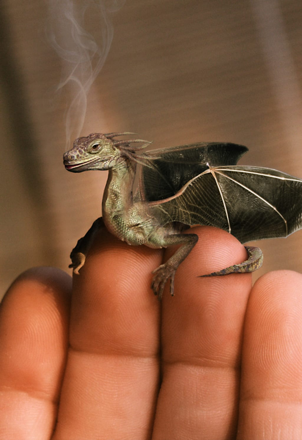 A Wee Scottish Dragon