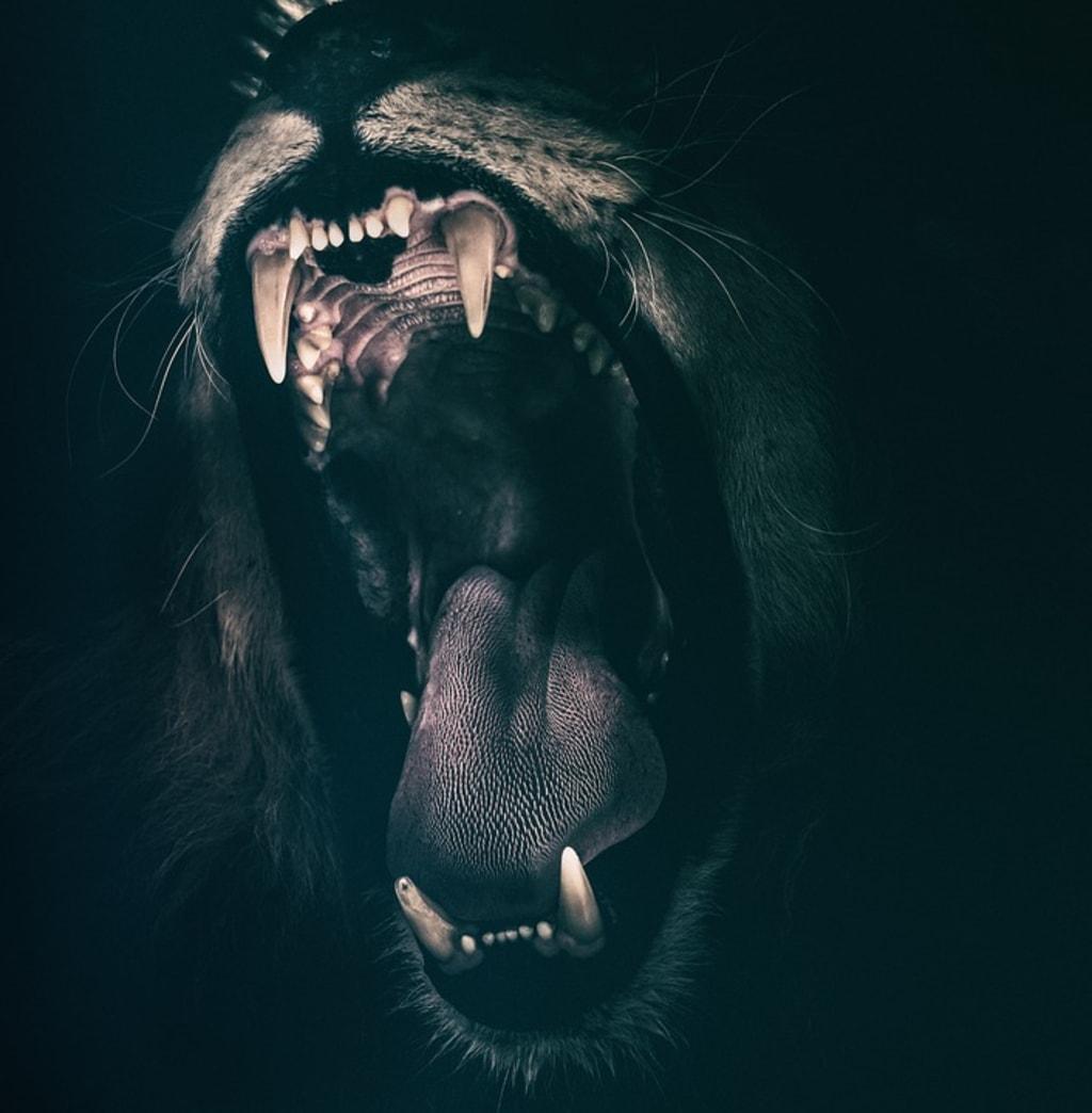 Common and Strange Phobias