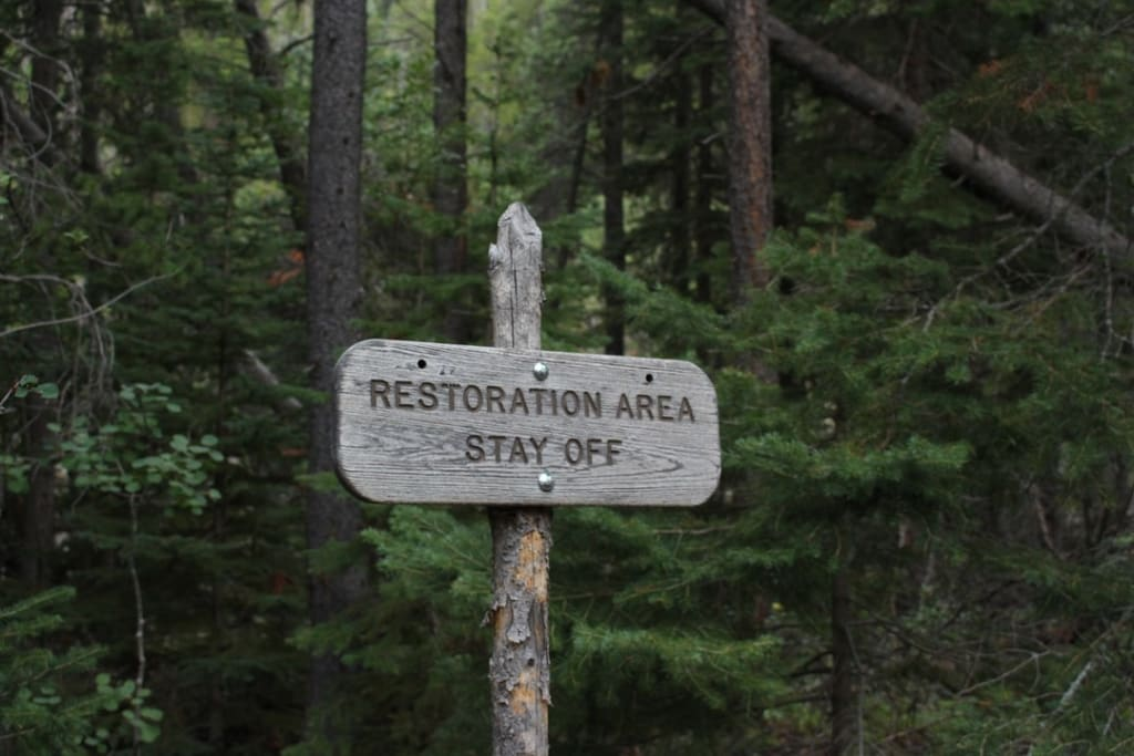 Restoration from Negativity