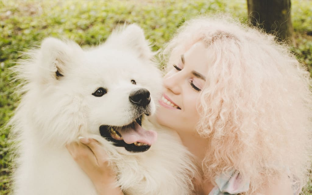Ways to Keep Your Pet Happy and Healthy