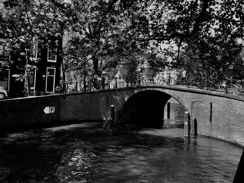 Dear Amsterdam