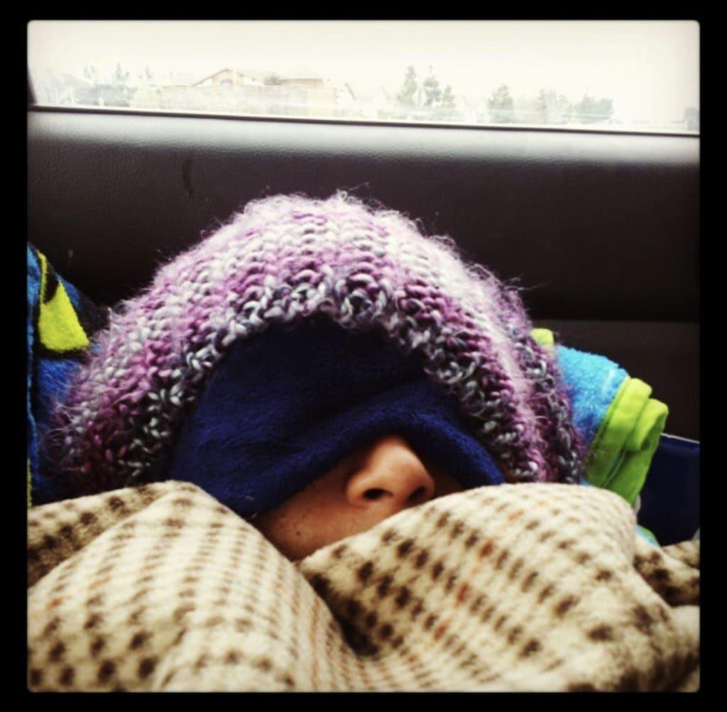 The Fine Art of Social Hibernation